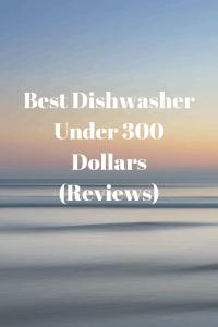Best Dishwasher Under 300 Dollars (Reviews)